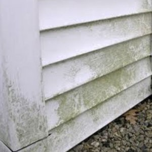 Clean siding using water-based cleaners