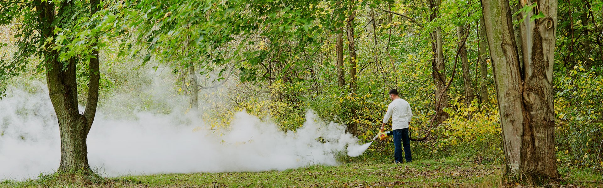Mosquito Foggers | The Fountainhead Group